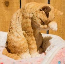 American Shorthair Cat Orange Washing Figurine -Life Like Realistic Statue Decor