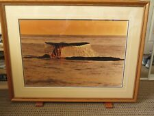 """Thomas Mangelsen Gray Whale Sounding Limited Edition Signed Framed photo 40""""W"""