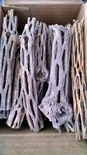 New listing Cholla Cactus Wood Box Full Organic Untreated Aquarium Craft Decoration (Bp6)