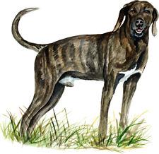 Plott Brown Brindle Scent Hunting North Carolina State Dog Hound Sticker Decal