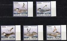 COMORES 2009 LES STERNINIS VOGEL BIRDS AVES SIDE STAMPS MNH