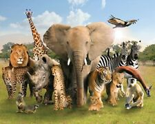Wild World Animals Safari Art Print Poster 36x24 inch Poster - 20x16