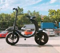 MSKS 36v/350w Two Wheel 12in. Portable Folding Off Road Electric Scooter NEW