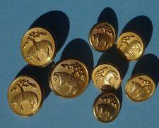 8 Buttons Golden Fleece Waterbury Gold Logo Blazer BROOKS BROTHERS Sheep