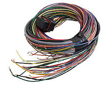 "Link 2.5m long Combo 'A' +""B' loom to suit G4 and G4+ ECUs     #2LA and #2LB"
