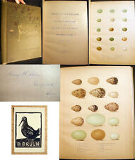 1886 CAPEN OOLOGY NEW ENGLAND COLOR PLATES COMPLETE ORNITHOLOGY BIRD EGGS