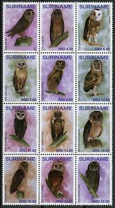 Suriname 2019 MNH Owls Masked Owl 12v Block Birds Stamps