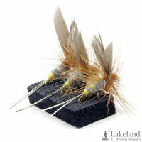 3, 6 or 12x Hares Ear Dry Trout Flies for Fly Fishing