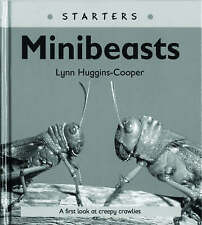 Read Write Inc. Comprehension: Module 24: Children's Books: Mini Beasts Pack...