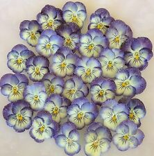 24 EDIBLE CANDIED PANSIES - CRYSTALLIZED REAL PANSY FLOWERS- PURPLE & CREAM