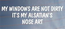 Model year windows are not dirty it 's model year Alsace nose art
