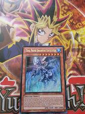 Carte Yu-Gi-Oh! Tidal, Maître Dragon des Chutes CT10-FR001 française / french