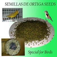 20g Brennnessel Kanarienvögel Stieglitze Wellensittich Diamanten Essen Vögel