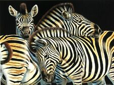 Jigsaw Puzzle Animal Wild Zebra Optical Abstract 500 pieces NEW made in USA