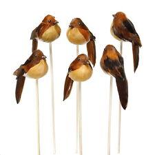 6x déco oiseaux nature, fiche, 8cm M.plumes