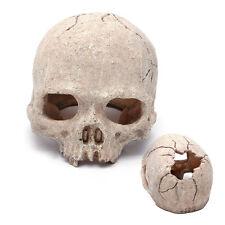 Aquarium Fish Tank Resin Spooky Skull Ornament Cave Vivarium Decoration 5.5 inch