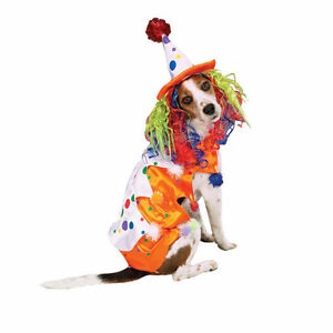 Zack & Zoey CLASS CLOWN Dog Costume Colorful Hat w/Wig Easy On/Off Closures