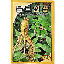 20 PCS Korea Wild Ginseng Vegetable Herb Seed Korea Panax Cultivation moo