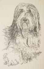 Bearded Collie Dog Art Portrait Print #39 Kline adds dog name free. Word Drawing