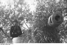 German Army Nashorn Hornet Gun Italy 1944 World War 2 Reprint Photo 6x4 Inch