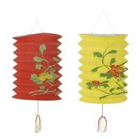 Pack of 2 Chinese Lanterns Assorted Designs - Chinese New Year Party Decorations