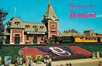 Disneyland The Magic Kingdom Anaheim Postcard Lot of 6 With Rare Ones!  01.17