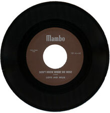 """LLOYD AND WILLIE  """"DON'T KNOW WHERE SHE WENT""""   CLASSIC DRIVING R&B    LISTEN!"""