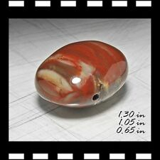 PETRIFIED WOOD NODULE CARVED OVAL PENDANT MINERALS CRYSTALS GEMS