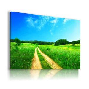 SPRING GREEN FIELD TREES BLUE SKY  Canvas Wall Art  LN107 MATAGA