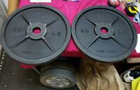 HOFFMAN BARBELL 45 LBS OLYMPIC WEIGHTS RARE