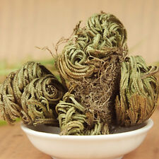 1pc  Live Resurrection Plant Rose of Jericho Dinosaur Plant Air Fern Spike MossA