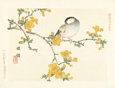 Songbird on Flowering Branch by Aoki Kosaburo 75cm x 58cm Canvas Print