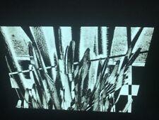 "Robert Stiegler ""Cactus, St. Louis"" American Photography 35mm Art Slide USE"