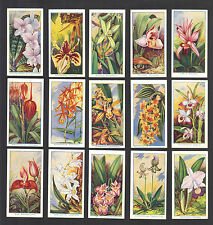 Cigarette Cards. Carreras Tobacco. Orchids. (Flowers). (1925). (Complete Set).