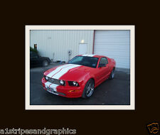 """05 06 07  08 09 2010 11 12 MUSTANG 10"""" Twin Rally Stripe Stripes Decals Graphics"""