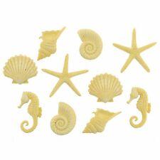 JESSE JAMES BUTTONS ~ DRESS IT UP - BEACH BEAUTIES 9364 ~ Seashells