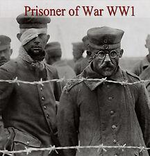 Rare Books Prisoner of World War WW1 ~  DVD 1  ~ Prison Camp Map Report Diary 51