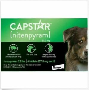 Capstar CAPT125 Oral Flea Treatment for Dogs – 6 Tablets