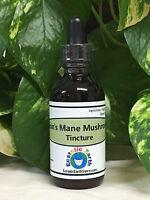 Lion's Mane Mushroom Tincture Extract Organic Herb Herbal Remedy Ecstatic Earth