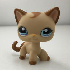 LPS#1024 Rare Brown Tan Shorthair Cat Kitty Littlest Pet Shop Blue Eyes Kitten