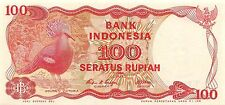 Indonesian Notes