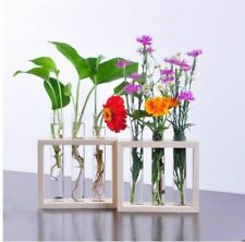 Glass Tube Bottle With Wooden Stand For Flower Plants House Decoration Souvenirs