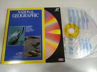 National Geographic Las grandes Ballenas Reino del Caiman - LASERDISC LD