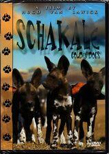 DVD   Schakale - Golden Dogs   Ein Film von Hugo van Lawick   Tier-Doku   Neu!!