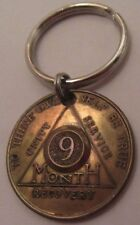 Alcoholics Anonymous AA Key Chain Sobriety 9 Month Key Ring Medallion Coin Token