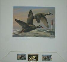 Goebel Surf Scoter 1996-1997 Federal Duck Medallion Print & Stamps 1015/2000