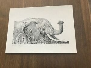 Signed by Glenn Irving limited edition of 100 elephant print of pencil sketch