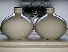 CHINESE Pair of Off White Pale Grey Crackle Glaze Round Gourd Bottle Flask Vases
