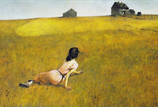Christina's World Andrew Wyeth Barn Country Realism Landscape Print Poster 14x11