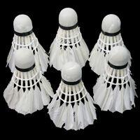 6 Pieces Badminton Balls Feather Shuttlecock White for Training Outdoor hot